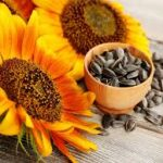 Do not consider these seeds common, as they will be able to buy them at a cheaper price once you know the benefits of eating them.