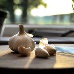 Hidden benefits of garlic acroamatic